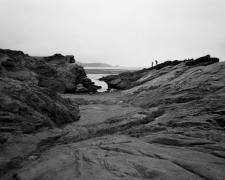 Point Lobos State Marine Reserve, 2014