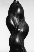 Amaryllis Bud, 1967