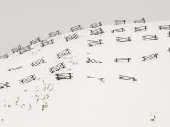 Hillside Fences Japan, 2009