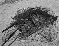 Bed, Sierra del Rosario, Sonora, carbon pigment print, 22 x 28 inches