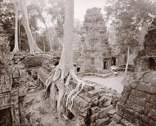Western Courtyard, Ta Prohm, Angkor, Cambodia, 1999,