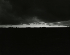 Untitled from Illinois Landscapes, 1979, gelatin silver contact print, 8 x 10 inches