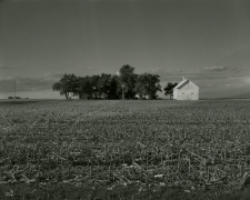 Untitled, from Farm Landscapes, 2010, gelatin silver contact print, 8 x 10 inches