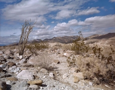 View Toward Coachwhip Canyon, Anza Borrego, CA