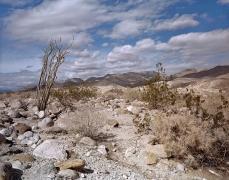 View Toward Coachwhip Canyon, Anza Borrego, CA