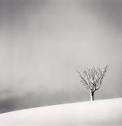 Snowfall, Numakawa, Hokkaido, Japan, 2004