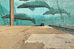Car And Whales, San Diego, California, 2004