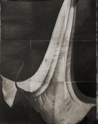 "Datura, from the series ""Reconstructions,""platinum palladium print on handmade Japanese gampi, sewn on Japanese washi"