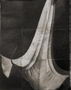 "Datura, from the series ""Reconstructions,""platinum palladium print on handmade Japanese gampi, sewn on Japanese washi"