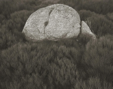 Rock on Gonnet, Lozere, France, 1995