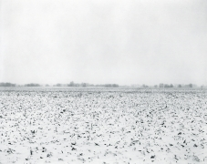 Rhondal McKinney, untitled, Ilinois Landscape