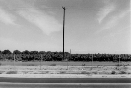 Autolandscape, California, 1971