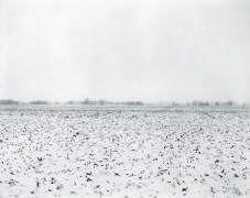 Untitled, from Illinois Landscapes, 2014, gelatin silver contact print, 8 x 10 inches