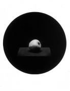 Apple, from the Paradise Series, 1993, gelatin silver print