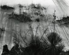 White Sands, 1946