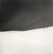 Michael Kenna, Asparagus Sticks, Study 2, Hokkaido, Japan, 2007, gelatin silver print
