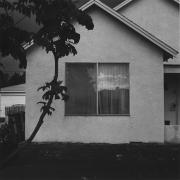 Los Angeles, 1978, gelatin silver print