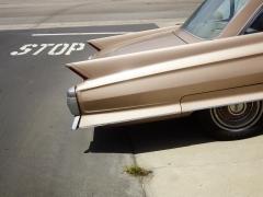 Tail Fin, Manhattan Beach, California, 2014