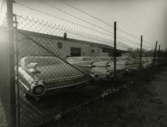 1959 Cadillacs, Long Island, New Yor, 1985