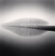 Copse Reflection, Vendramin, Veneto, Italy, 2007