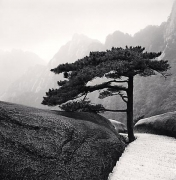 Huangshan Mountains, Study 18, Anhui, China, 2009