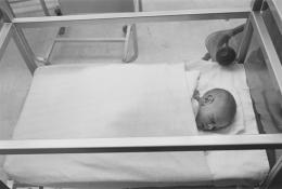 Enrico Natali's son, Vincenzo Natali, on the day of his birth, Detroit, 1968