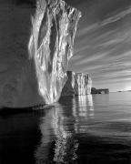 Diane Cook, Disko Bay, Ilulissat, Greenland, 1999