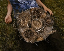 Virginia Beahan, Nests from my Mother's Garden, Yardley, PA, 2004,