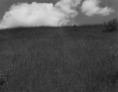Landscape, Kalamazoo, Michigan, 1970, from Portfolio II