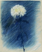 Betty Hahn, Blue Chrysanthemum #1
