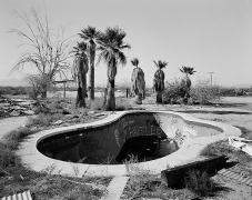 Pool and Palms, Gila Bend, Arizona, carbon pigment print, 32 x 40 inches