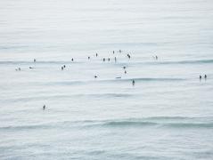 Surfers Hawaii, 2013