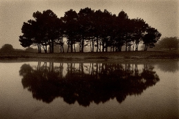 Sea Ranch Links, Sepia toned gelatin silver print, 5 x 7 inches