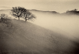 Approaching Fog, Sepia toned gelatin silver print, 5 x 7 inches