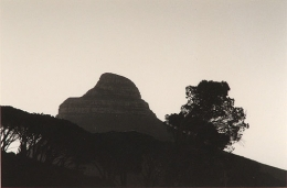The Lions Head, Cape Town, 2005