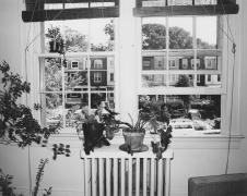 study, Ingleside Terrrace, Washingon DC, 1977-1978