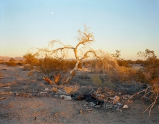 Moonrise, Slab City, CA