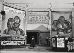 Count Nicholas' Gorilla Show, Gooding Amusements, Maumee, Ohio, 1974, vintage gelatin silver print