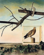 Jo Whaley, Mourning Dove, Winter, 1992,