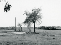 Lewis Baltz CP46, from Candlestick Point