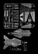 F-14 Tomcat, 2005, carbon pigment print, 38 x 28 1/4 inches