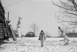 Girl in Snow with Pit Bulls, Malden, Massachusetts, 1993