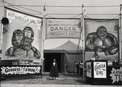 Count Nicholas' Gorilla Show, Gooding Amusements, Maumee, Ohio