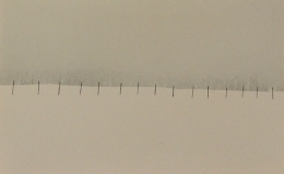 Bill Timmerman, Fence, White Mountains, Arizona, 2000, toned gelatin silver print, 4 x 6 inches