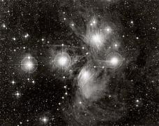 Stars of the Pleiades
