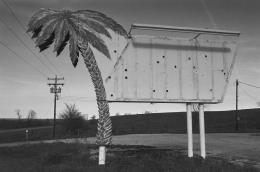 Palm Tree Sign, Atchison, Kansas, 1977