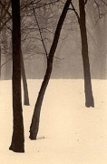 Winter in Palos, Sepia toned gelatin silver print, 7 x 5 inches