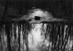 Redding Stream, Connecticut, 1968, gelatin silver print