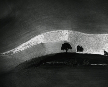 Two Trees on a Hill with Shadows, Paso Robles, CA, 1974