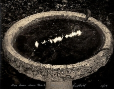 Mark Klett, One Hour Sun Track Through My Birdbath,